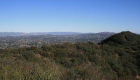 Duizend Panorama van Eiken Stock Foto