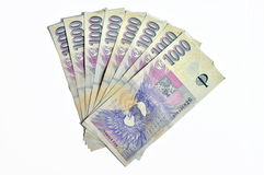 Duizend Tsjechische kronen Royalty-vrije Stock Foto