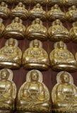 Duizenden kleine beelden van Boedha in de Zaal van Meun Buddhasukkhavadi Stock Foto