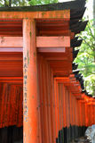 Duizenden van Torii in Fushimi Inari Taisha, Kyoto Stock Fotografie