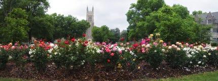Duke Chapel Panorama royalty free stock image