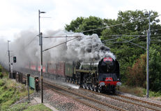 Duke of Gloucester steam train Royalty Free Stock Photography