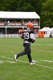 Duke Johnson Jr NFL Cleveland Browns stock image