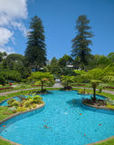 Duke of Terceira Garden, Angra, Terceira, Azores Royalty Free Stock Photo