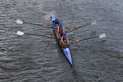 Duke University races in the Head of Charles Regatta women's Championship Fours Stock Image