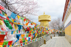 Dukezong-Tempel, der an Shangri-La sich befindet, Yunnan China Es gibt ein größtes tibetanisches Gebet drehen herein die Welt bei Stockfotos