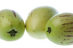 dulce查出的瓜梨pepino 免版税库存图片