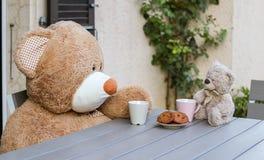 Dulce dos Teddy Bears que se sienta en la tabla afuera con la taza de té y de galletas fotografía de archivo libre de regalías