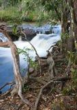Dulhunty flod Royaltyfria Bilder