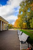 A sad autumn park in cloudy weather stock photography