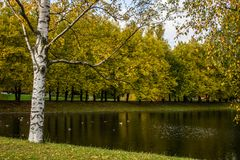 A sad autumn park in cloudy weather stock image