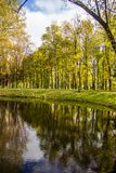 A sad autumn park in cloudy weather royalty free stock photography