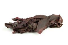 dulseirländareseaweed arkivfoton