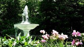 DULUTH, ΜΝ - 1 ΙΟΥΛΊΟΥ 2018: Πηγή στον κήπο λουλουδιών στο μέγαρο Glensheen απόθεμα βίντεο