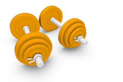 Dumb-bells. Equipment for the weight training Stock Image