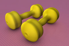 Dumb-bells. Equipment for the weight training Royalty Free Stock Images