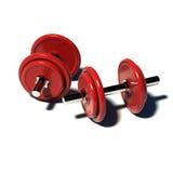 Dumb bells. Hi res rendering red dumb bells on white floor Royalty Free Stock Photos