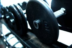 Dumb Bells. Close up in gym room Stock Image