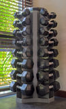 Dumb bells in a fitness studio Stock Photography