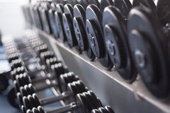 Dumb bells lined up Royalty Free Stock Photos