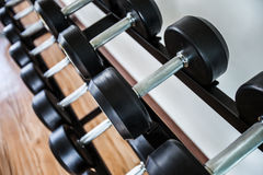 Dumb bells lined up in a fitness studio. picture is short focus. Keep fit and healthy royalty free stock photos