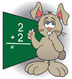 Dumb Bunny. Bunny at blackboard struggling with math problem Royalty Free Stock Photography