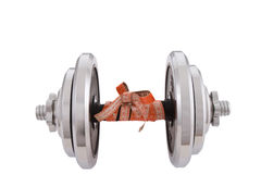 Dumbbell. Concept of losing kilograms weightlifting Royalty Free Stock Photography