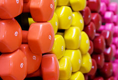 Dumbbell, barbell Stock Photo