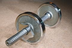 Dumbbell on carpet. Royalty Free Stock Photo
