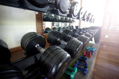 Dumbbell on shelf of gym room Stock Photography