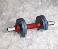 Dumbbell and down feathers Royalty Free Stock Photos