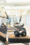 Dumbbell on the exercise bench. Two dumbbells on the exercise bench. Gym equipment Royalty Free Stock Photos