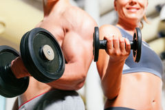 Dumbbell exercise in gym Stock Photo