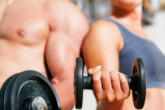Dumbbell exercise in gym Royalty Free Stock Photography