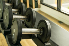 Dumbbell Royalty Free Stock Photos