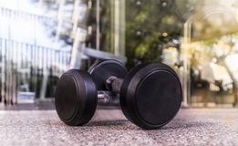 Dumbbell in Fitness Room Stock Images