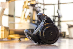 Dumbbell in Fitness Room at the morning Royalty Free Stock Photo