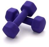 Dumbbell-Gewichte Lizenzfreies Stockfoto