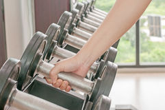 Dumbbell in gym Stock Photos