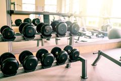 Dumbbell gym on the training room. Black dumbbell gym on the training room, light at the morning royalty free stock image