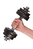 Dumbbell in hand. Stock Images