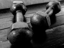 Dumbbell for health royalty free stock photo