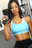 Dumbbell Lifting. African american woman training or exercising in gym, doing weight lifting Royalty Free Stock Image