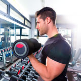 Dumbbell man at gym workout biceps fitness. Weightlifting Stock Photos