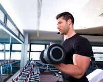 Dumbbell man at gym workout biceps fitness Royalty Free Stock Image