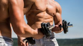 Dumbbell. Muscular bodybuilder guys, exercises with dumbbells. Strong bodybuilder, perfect deltoid muscles, shoulders royalty free stock image