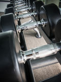 Dumbbell on rack Stock Image