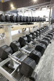 Dumbbell rack in a gym Stock Photography