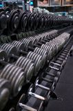 Dumbbell Rack with Silver and Black Weights Royalty Free Stock Photos