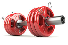 Dumbbell red Stock Photography